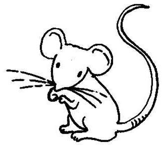 Mouse Clipart Black And White - ClipArt Best
