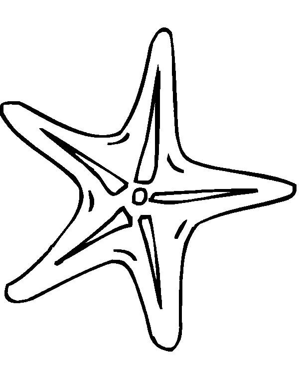 Outline Of Starfish - ClipArt Best