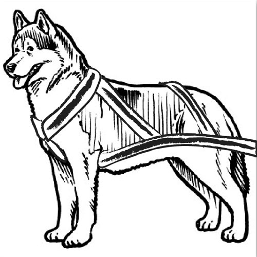 How To Draw A Dog Sled - ClipArt Best