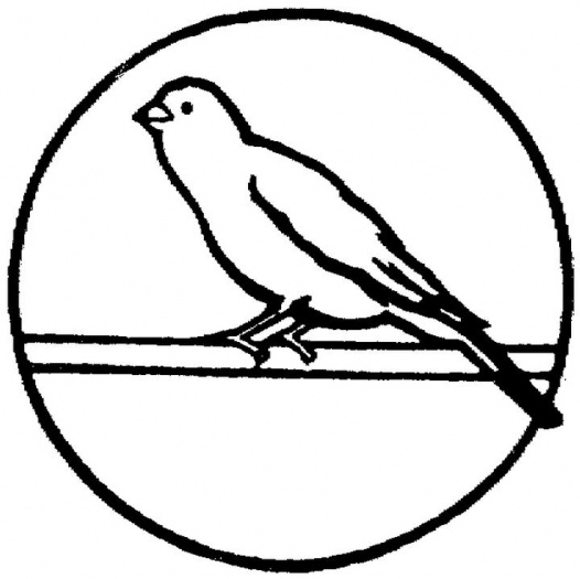 canary bird coloring pages - photo#15