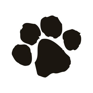 Set of 24 - Cat Paw Prints Wall Art Vinyl Decals [CPAW24] - $19.97 ...