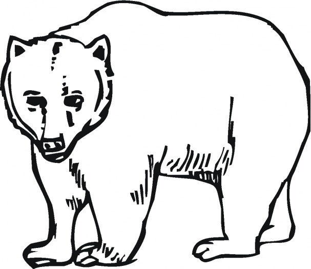 Grizzly Bear Outline ClipArt