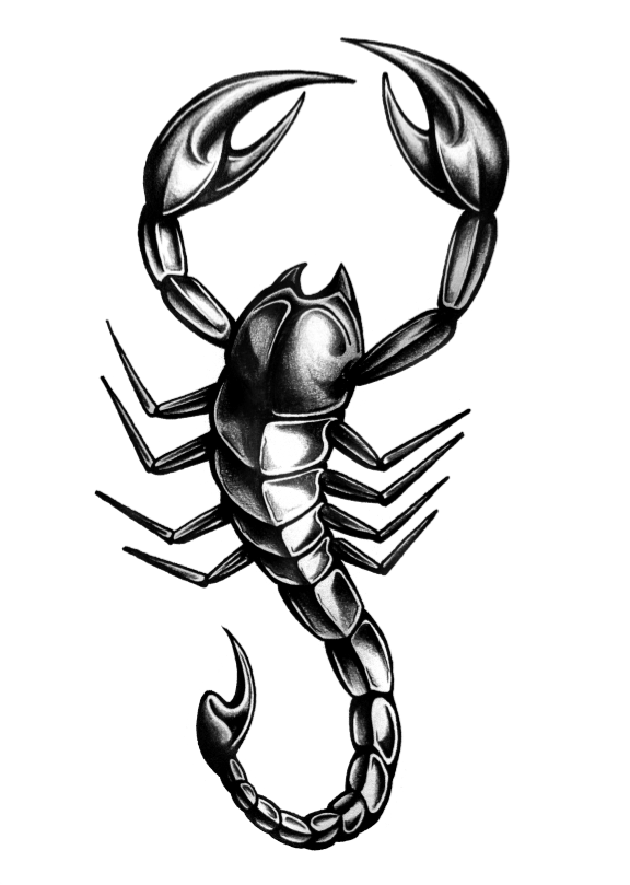 Scorpion Tattoo Design Drawings