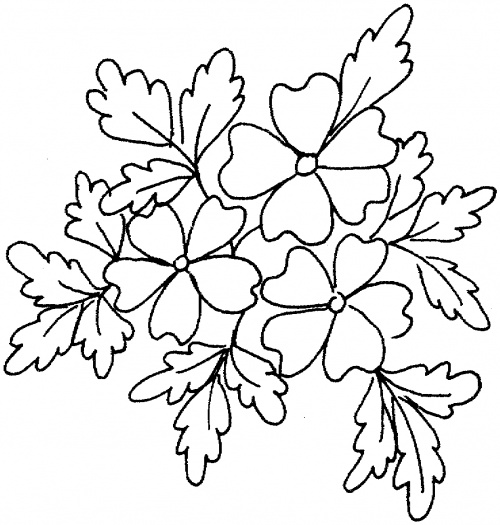 Free Coloring Pages Of Dogwood Flowers