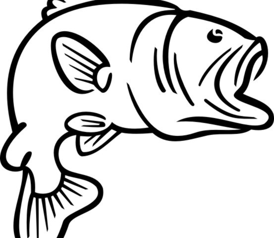 Bass Fish Coloring Pages - Free Clipart Images - ClipArt Best - ClipArt Best