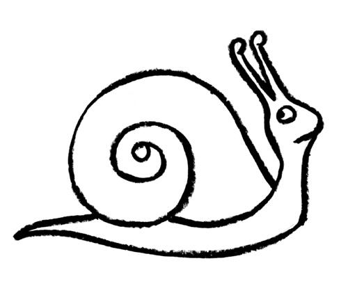 Sea Snail Drawing Sea Snail Drawing Sea Snail
