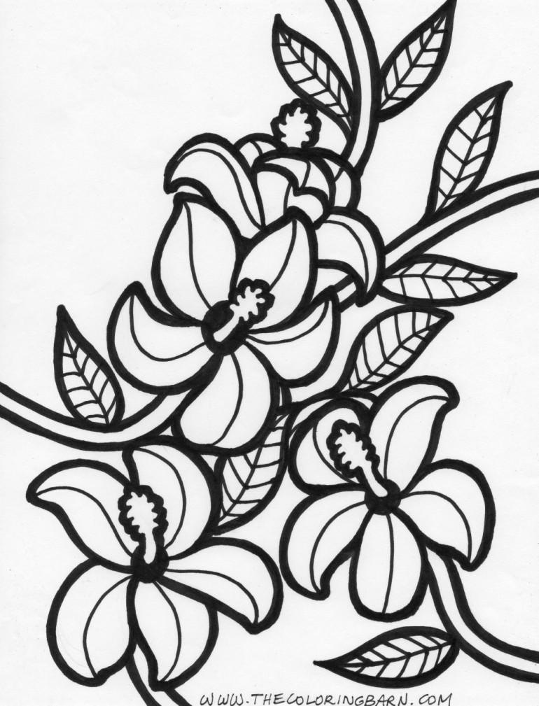 Tropical Rainforest Flower Coloring