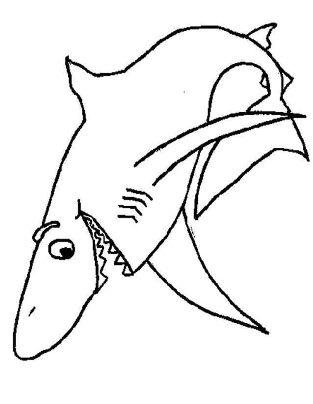 Requin dessin clipart best - Dessin requin facile ...