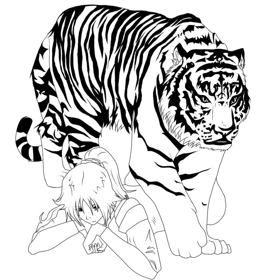 Line Drawing Tiger : White tiger line art