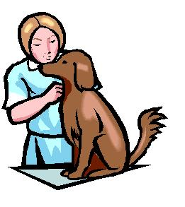 Veterinarian Clipart - ClipArt Best