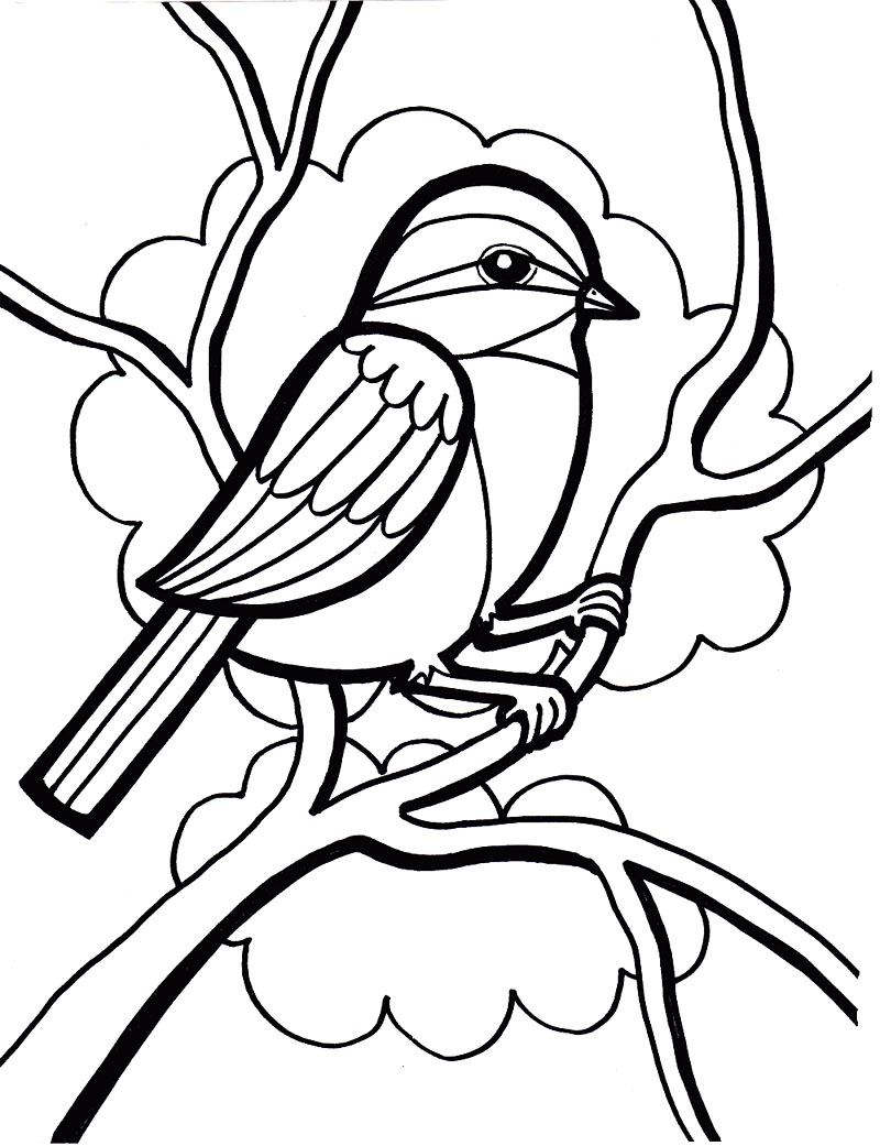 chickadee bird coloring pages - photo#24