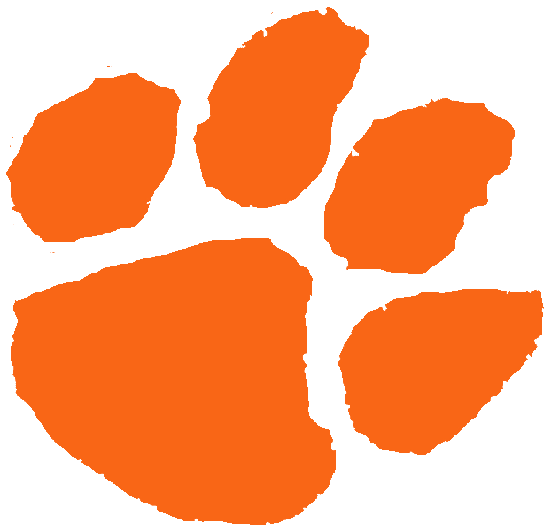 Tiger paw - photo#4