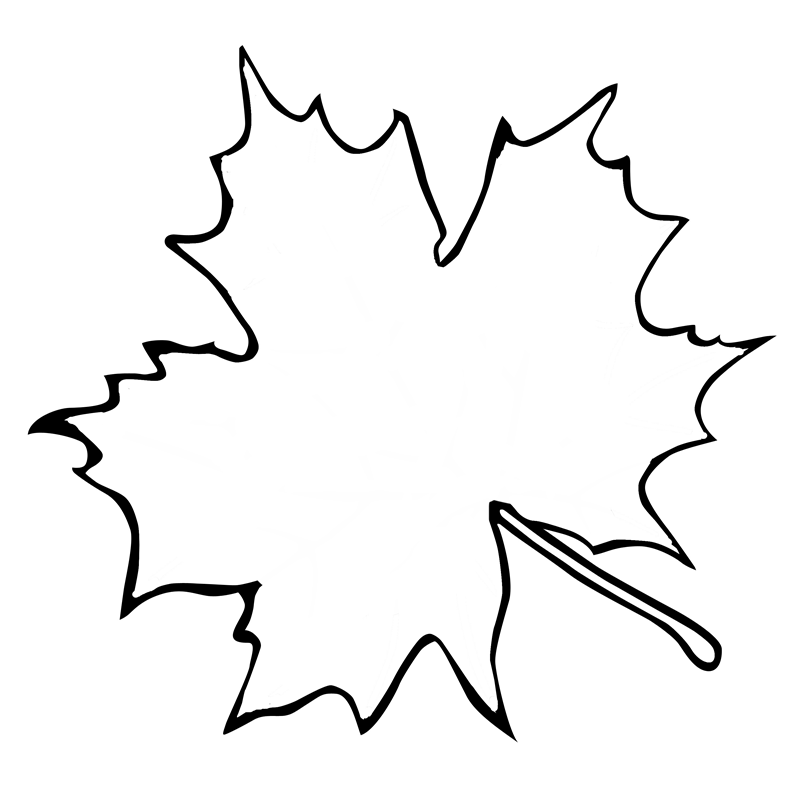 Maple leaf coloring clipart best for Coloring page of a maple leaf