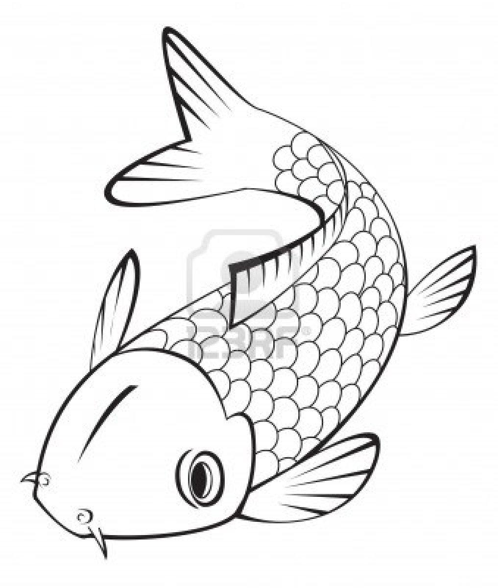 Line Drawing Koi Fish : Koi fish drawing clipart best