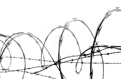 barbed wire drawing - photo #24