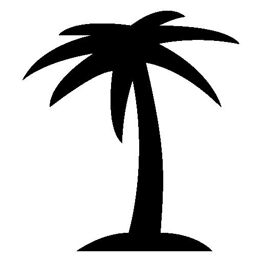 icono palmera seonegativocom