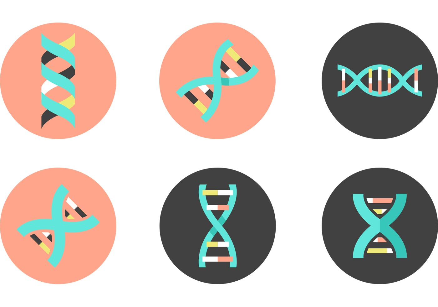 Double Helix Free Vector Art - (331 Free Downloads)
