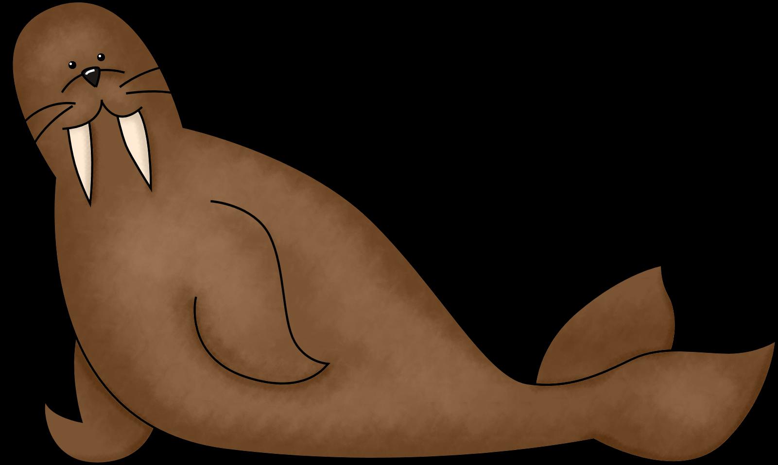 Cute walrus stock illustration Illustration of collection