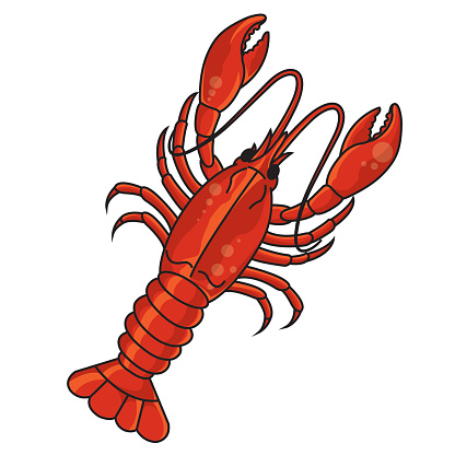 Crawfish Vector Art - ClipArt Best