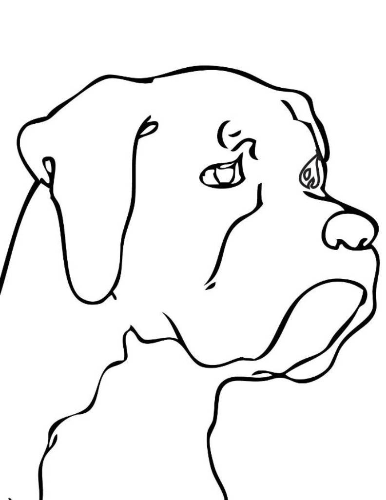 Clipart Animal Simple Line Drawing : Drawing dog clipart best
