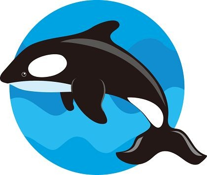 Cute Whale Clipart - ClipArt Best