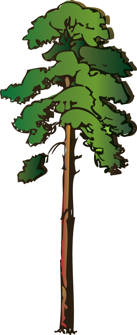 Acacia Tree Clip Art - ClipArt Best