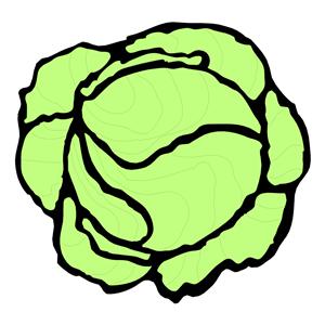 Clip Art Lettuce Clip Art lettuce clipart best clip art best