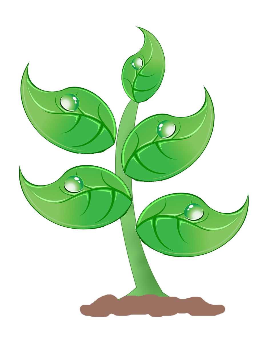 Image result for Plant Clip Art