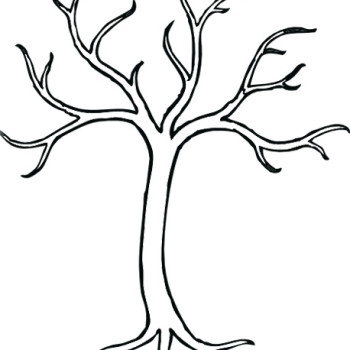 Tree Without Leaves Template Sketch
