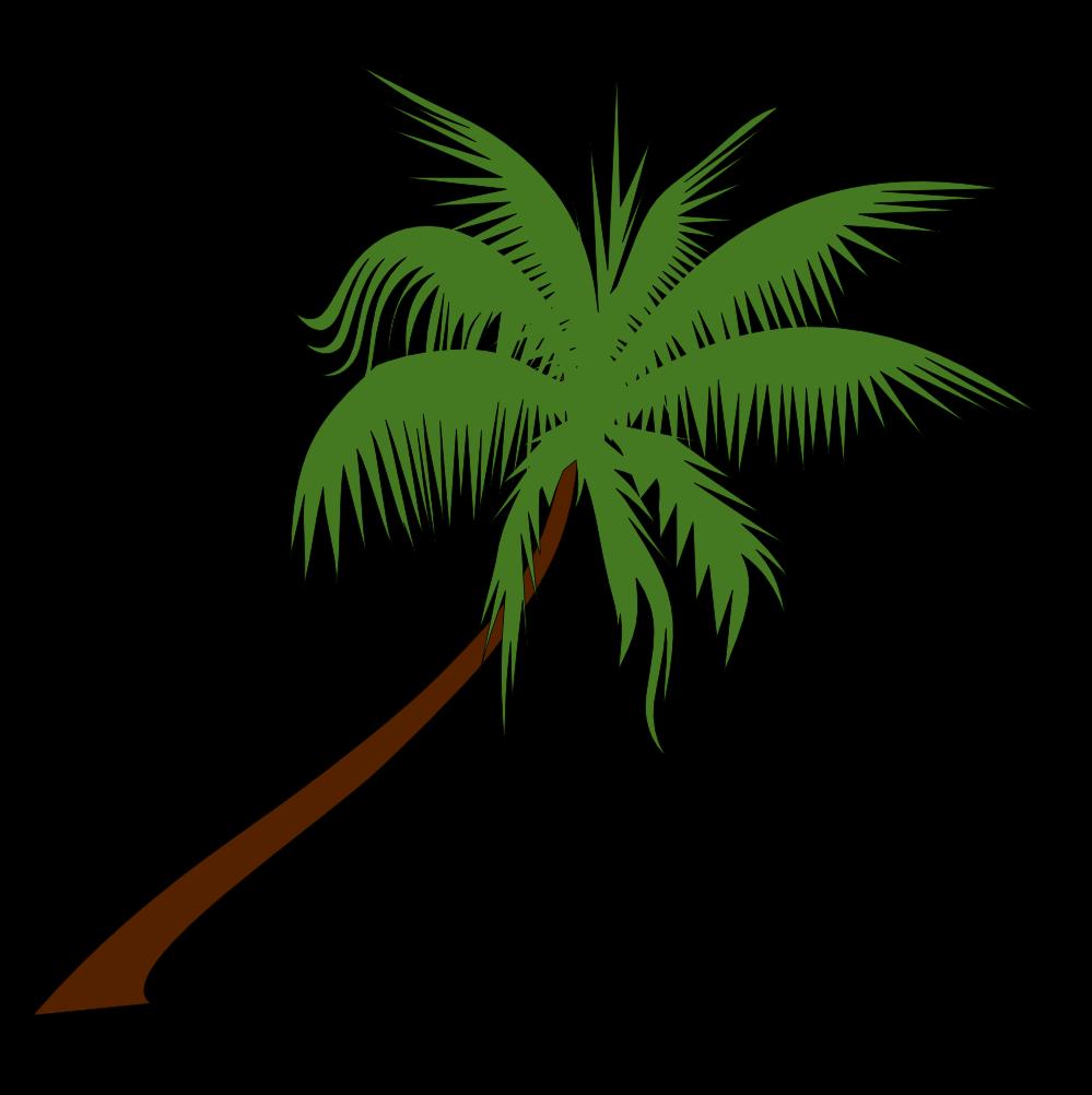 Palm Trees Cartoon Images of Cartoon Palm Trees