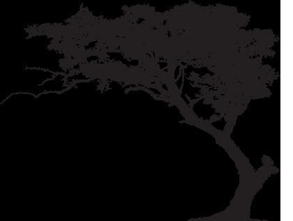 Big Tree Clipart – Cliparts