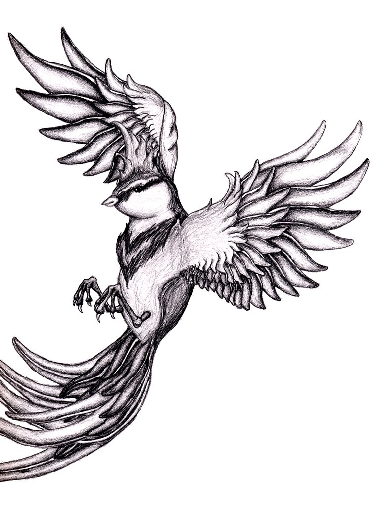 Flying Bird Drawing | Free Download Clip Art | Free Clip Art | on ...