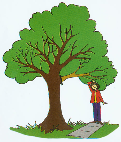 Tree With Three Branches Clipart Best Clipart Best Clipart Best Multiple sizes and related images are all free on clker.com. tree with three branches clipart best clipart best clipart best
