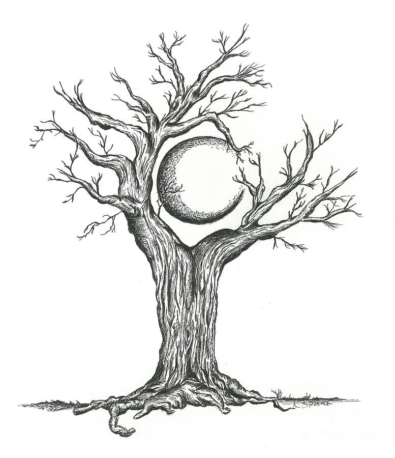 Line Drawing Moon : Tree craddling crescent moon drawing by karen sirard