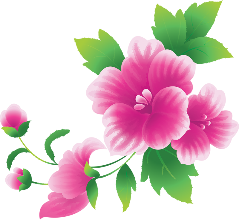 26 Picture Of Flowers Free Cliparts That You Can Download To