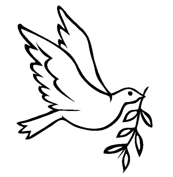 Dove Bird FLy With Olive Leaves Coloring Pages