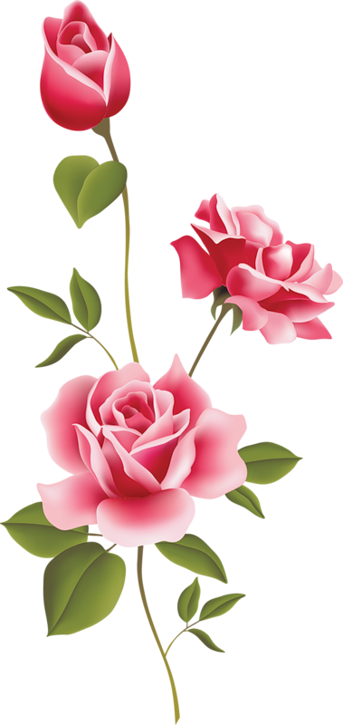 rose clip art sms - photo #22