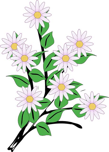 bunch of flowers cartoon clipart best clipart daisies flowers daisies clip art free