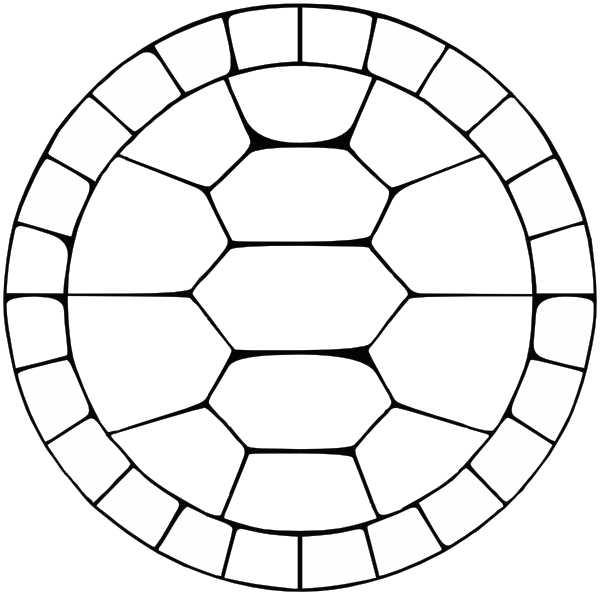 Turtle Shell Template - ClipArt Best