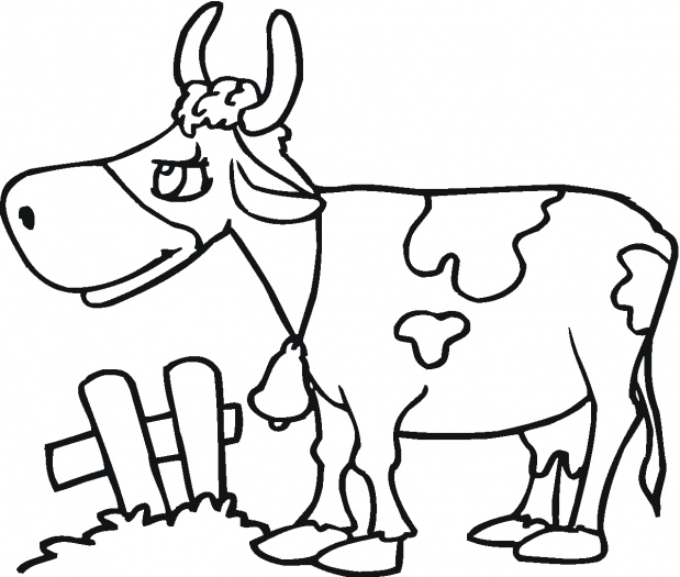 Cow Illustration 3 Coloring Page