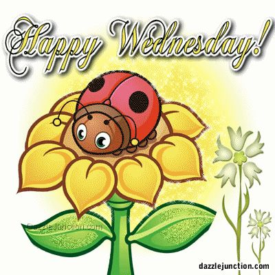 Clip Art Happy Wednesday Clipart happy wednesday clipart best tumundografico images sia course