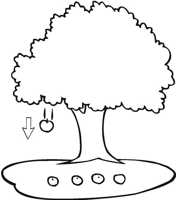 Apple Falling From Tree Clipart - ClipArt Best
