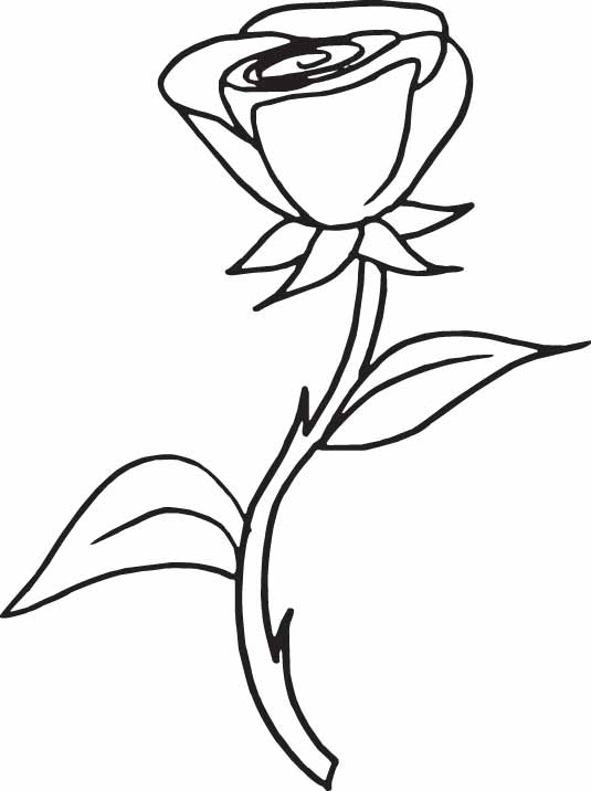 Red Rose Line Drawing ClipArt