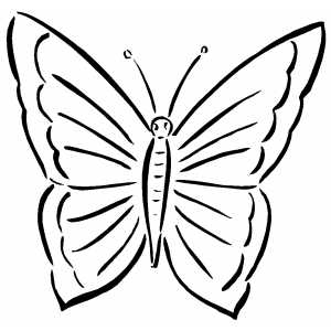 coloring pages of butterflies and caterpillars animated | Simple Butterfly Images - ClipArt Best