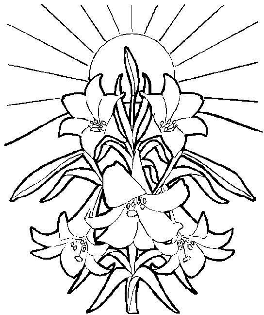 Line Drawing Easter : Easter line art clipart best