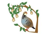 Partridge In A Pear Tree Clip Art - ClipArt Best