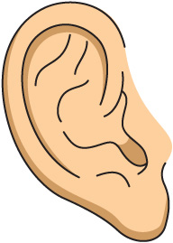 How to protect your ears from hearing from loud sounds and ...