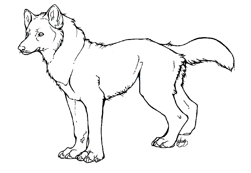 Wolf Outline Drawing - ClipArt Best - ClipArt Best