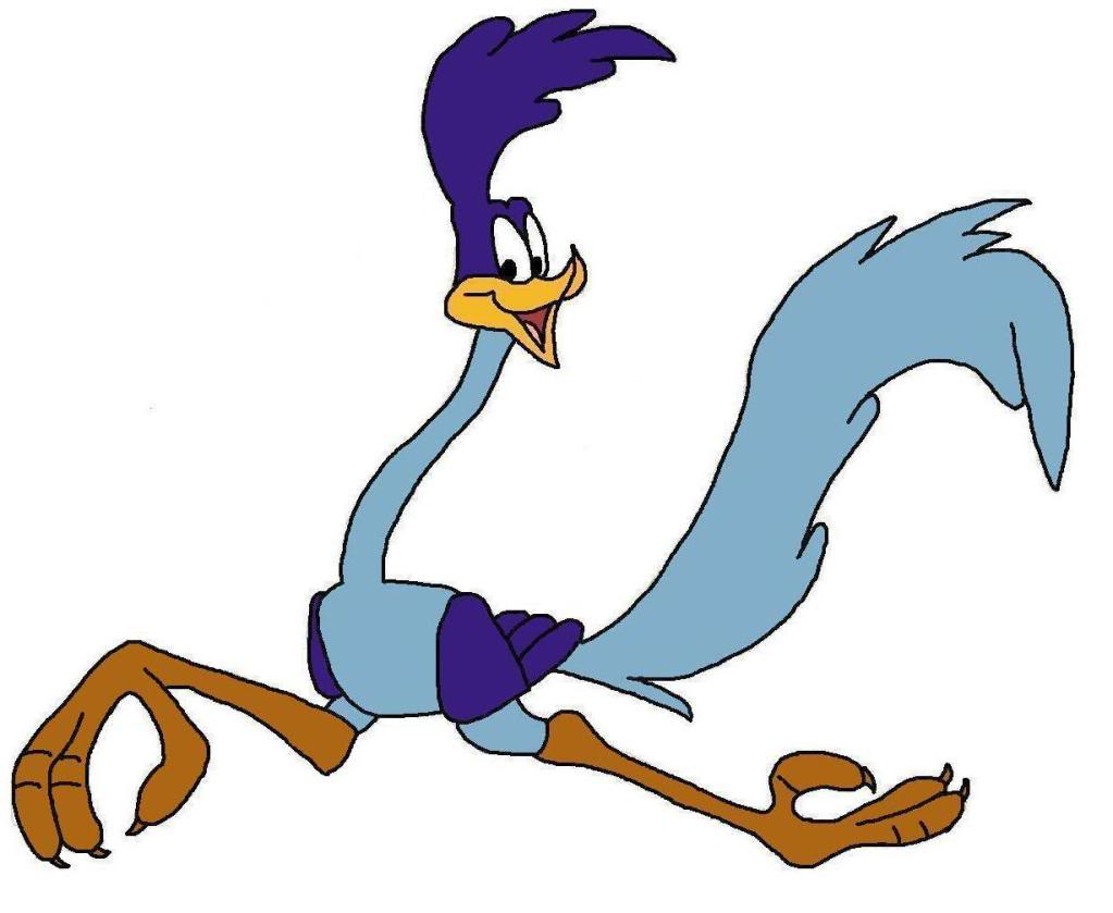 Roadrunner Cartoon - ClipArt Best