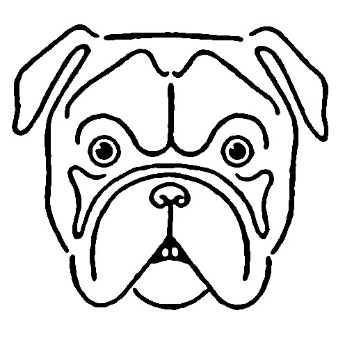 bulldog face drawing avintage kids printable draw a